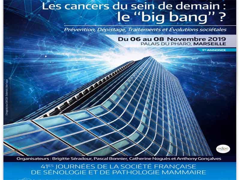 عنوان کنفرانس اوایل نوامبر فرانسه «big bang »