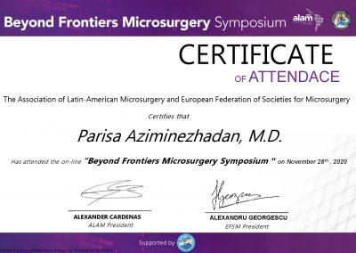 certificate Parisa Aziminezhadan-page-001